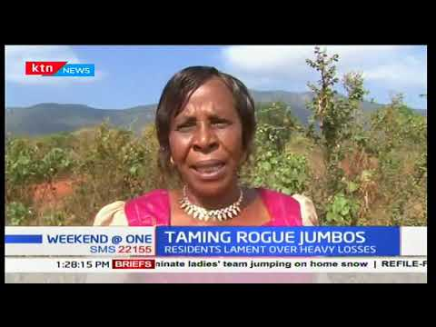 Taita Taveta residents express concern over huge loses they incur as a result of destruction