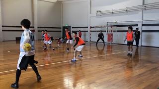駒澤大学ハンドボール部2017年2月4日帝京大学戦