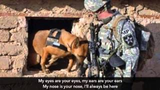 Tribute to Police Dogs and War Dogs