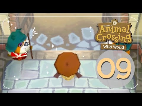 Let's Play Animal Crossing: Wild World 09 - Off We Go!