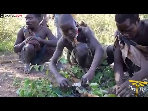 When primitive life African aboriginal hunting - HD 2016 - Part 1