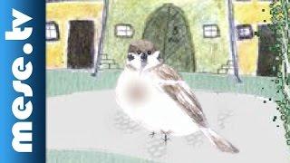 Zelk Zoltán: Vers a mitugrász verébről (animáció, mese)