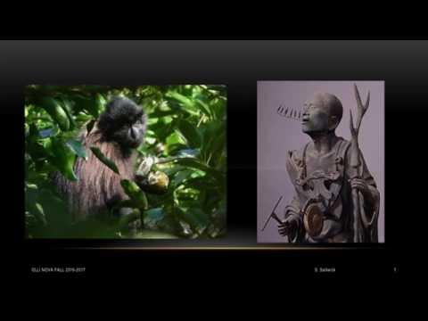 Brain Seminar 4 - Brain and Culture: Primate Foundations