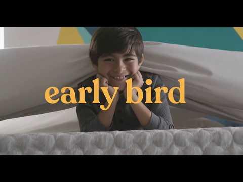 the-better-sleep-store-now-offers-corsicana-early-bird-matresses