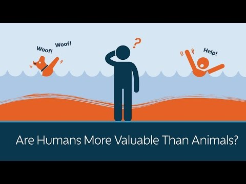 Are Humans More Valuable Than Animals?