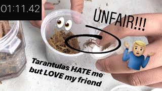 Mr. Feet rehouses 6 TARANTULAS in JUST over ONE MINUTE like it's nothing ~ UNFAIR !!! (feat.  Xena)
