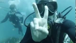 видео Дайвинг - Дайвинг в Тунисе