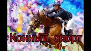 Мой смысл жизни это - конный спорт ❤️