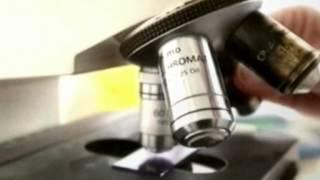 ФЛЭШКА-МОЛЕКУЛА ДНК-02