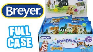 Breyer Pocket Box Dogs Surprise Full Case Unboxing Toy Review Pocket Dogs