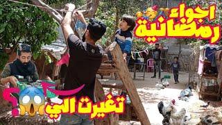 تزيين بيوت الطيور🤭/اجواء رمضانيه جميله ماذا حدث للكتاكيت اسناء التزيين😱 .. ؟