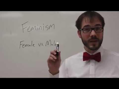 Видео Feminist literary criticism essay