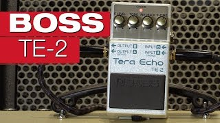 Boss TE-2 Tera Echo E-Gitarreneffekt-Review von session