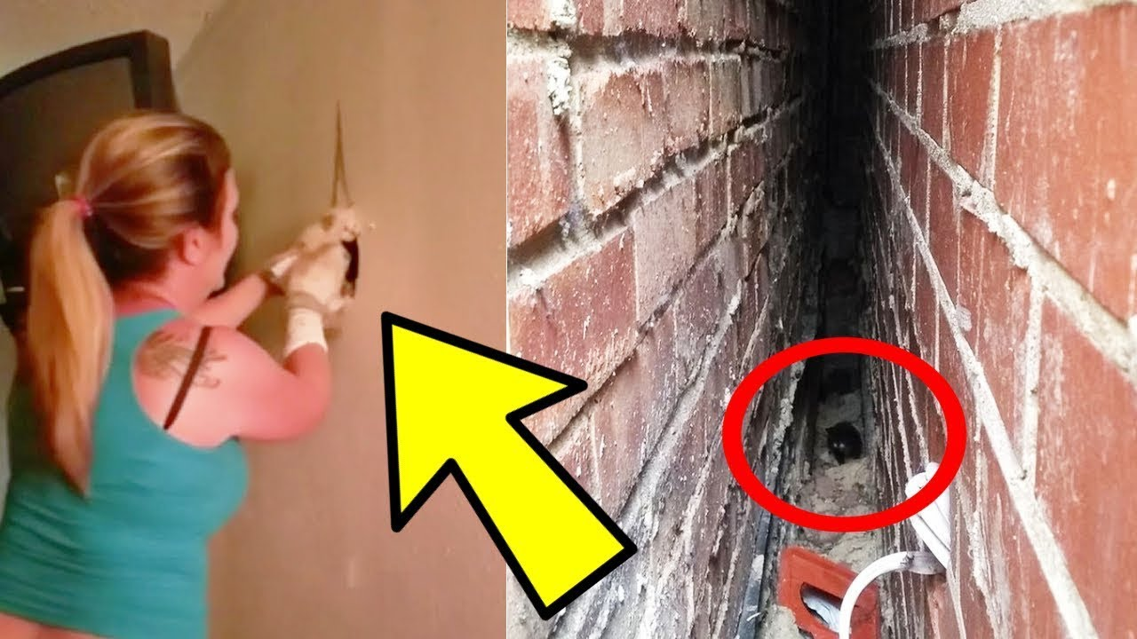 Woman Hammers Down Her Wall To Unravel The Source Of Weird Sounds Inside Her House