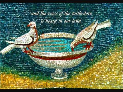 Medieval music - Tota pulchra es by John Plummer