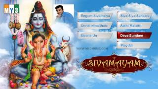 Lord shiva tamil songs - siva mayam - jukebox - bhakti