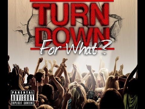DJ Snake Feat. Lil Jon, Pitbull, Juicy J, Ludacris, & 2 Chainz - Turn Down For What Remix