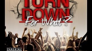 Download lagu DJ Snake Feat. Lil Jon, Pitbull, Juicy J, Ludacris, & 2 Chainz - Turn Down For What Remix