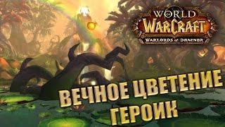 WoW Draenor: Вечное Цветение (5ppl героик)