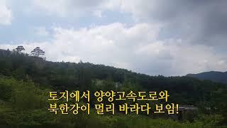 [양평토지 급매]4천만원 인하 ! 알땅 400평 매매(…