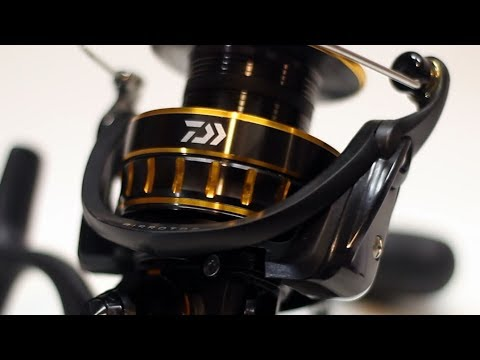 The Perfect Spinning Reel ... Almost | Daiwa BG4000 Comprehensive Review