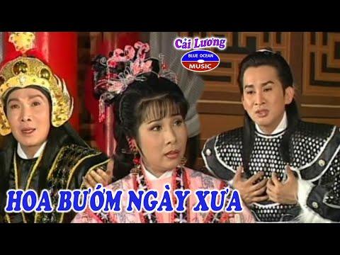 Cai Luong Hoa Buom Ngay Xua (Phuong Mai, Vu Linh, Kim Tu Long)