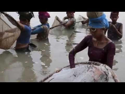 Nepal: Tradtional River Fishing