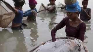 nepal tradtional river fishing