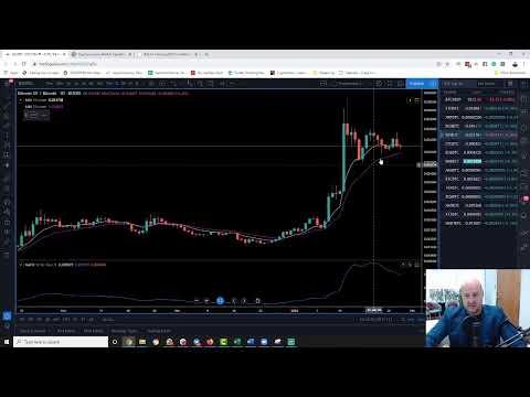 Top Picks For 2020 Crypto Bull Run | LIVE Scan (2020)