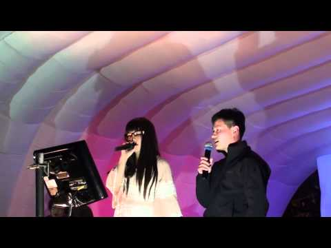 My Heart Will Go On - Celine Dion - Karaoke - Auckland Lantern Festival 2012 MC Shen Sings