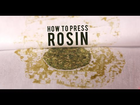 How To Roll A King Size Filter Tip Joint Marijuana Tip