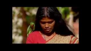 Girl Stars - Suryamani the Nature Activist (by Going to School in India)