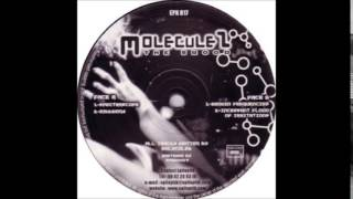 Moleculez - A1 - Spectrascope [EPK017]