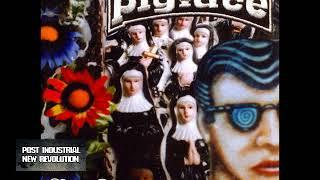 Pigface - Easy Listening For Difficult Fuckheads (2003) full album