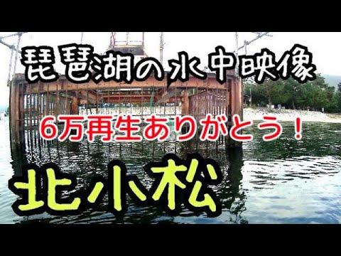 琵琶湖の水中映像 北小松の取水塔と小さな突堤沖