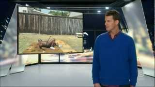 Repeat youtube video Tosh.0 - The Harlem Shake