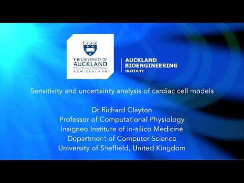 Sensitivity and uncertainty analysis of cardiac cell models