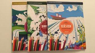 Обзор раскрасок по номерам/ Пейзажи/Животные/Волшебные миры/Издательство Клевер
