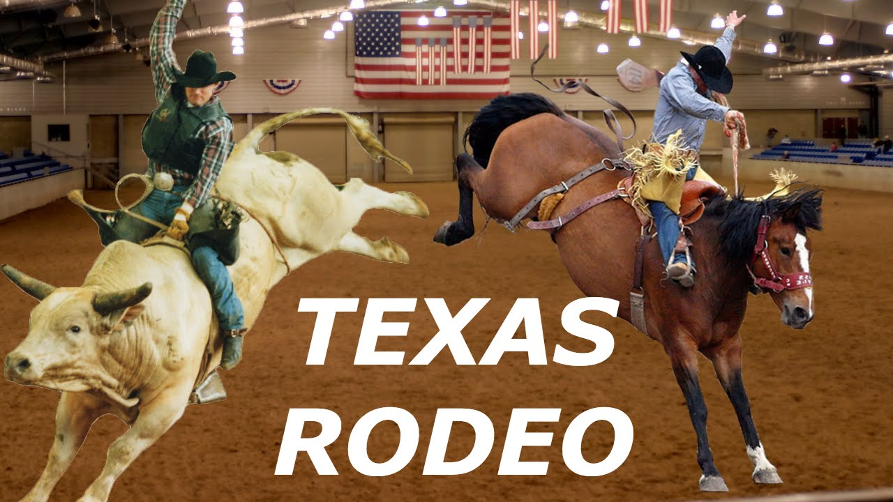 Texas Rodeo In San Antonio Coliseum Buckin Broncos And
