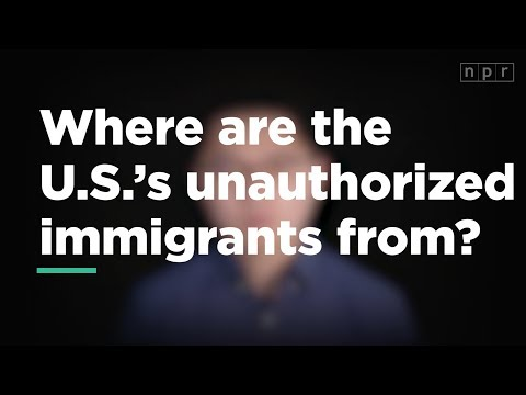 Where are the U.S.'s unauthorized immigrants from? | Let's Talk | NPR