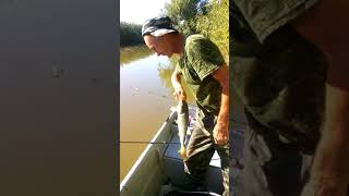 Рыбалка в Гандурино осень 2018 года.Ловим сазана.