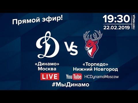 """Динамо"" - ""Торпедо"". Прямая трансляция 22 февраля 2019 года."