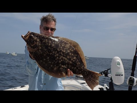 12-pound Fluke (Flounder) Released! Plus Mutant Fish And Horrible Boat Fire