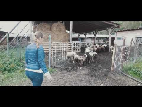Ешь Российское - Крестьянско-фермерское хозяйство «Кошелев В.В.»