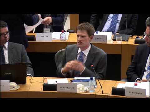 Whitaker's evidence to the European Parliament's Constitutional Affairs Committee, 27 May 2013