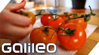 Diese harmlosen Lebensmittel können tödlich sein | Galileo | ProSieben