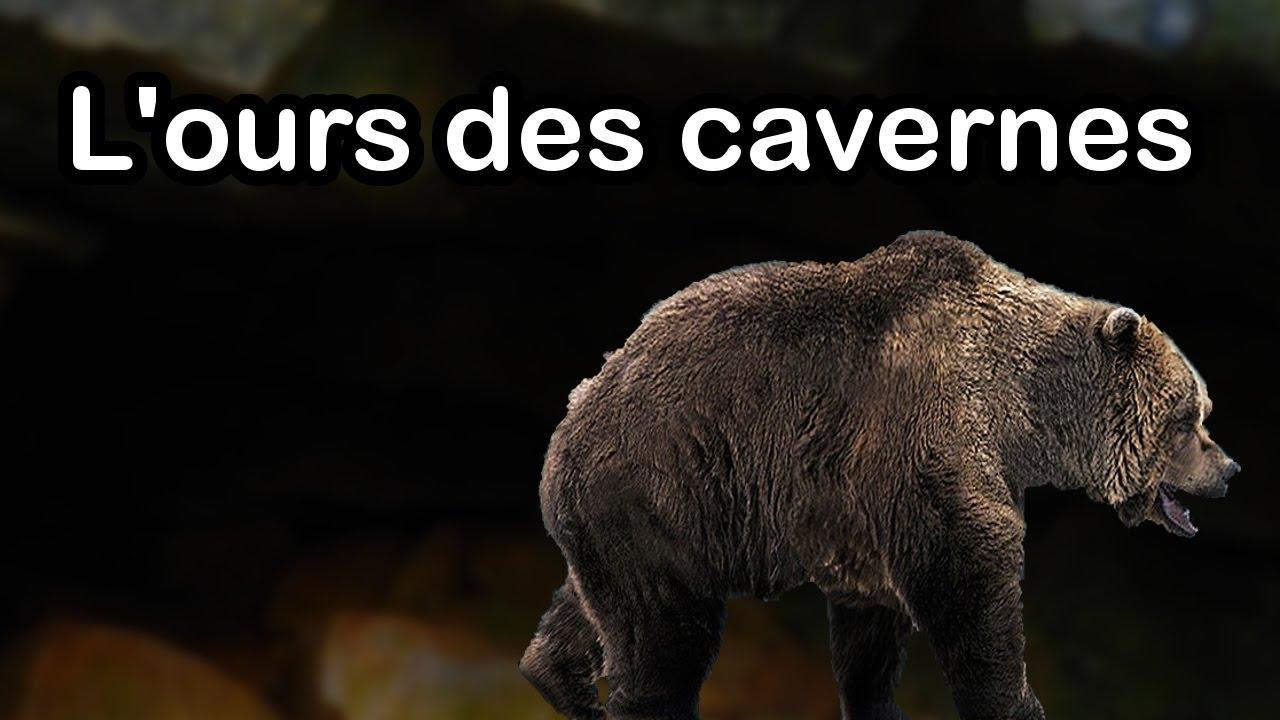 tout ce que vous devez savoir sur l 39 ours des cavernes. Black Bedroom Furniture Sets. Home Design Ideas