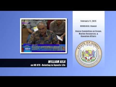 William Aila Testifies Against Ban On Aquarium Fish Sales