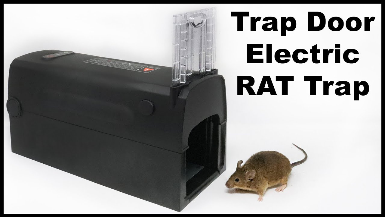 Shut The Front Door Electric Rat Trap -  Montrap Electric Trap. Mousetrap Monday