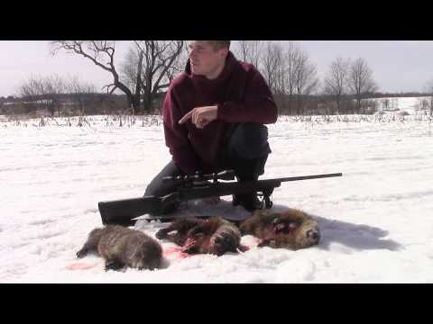 Woodchuck Hunting March
